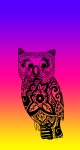 NeonRainbow Owl2