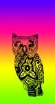 NeonRainbow Owl3
